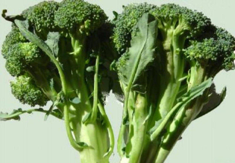 70g Calabrese brócoli Semillas ~ 20,000ct MAYOR ...