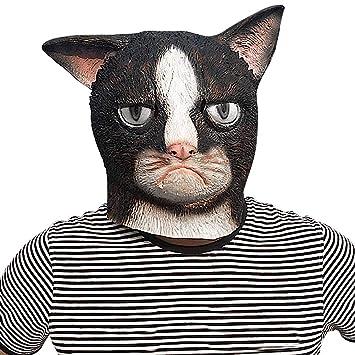 Máscaras de pelota de Halloween para gatos, festivales, disfraces, disfraces, disfraces,