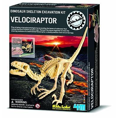 4M 663234 - Juego de excavación (incluye esqueleto de dinosaurio velociraptor): Juguetes y juegos