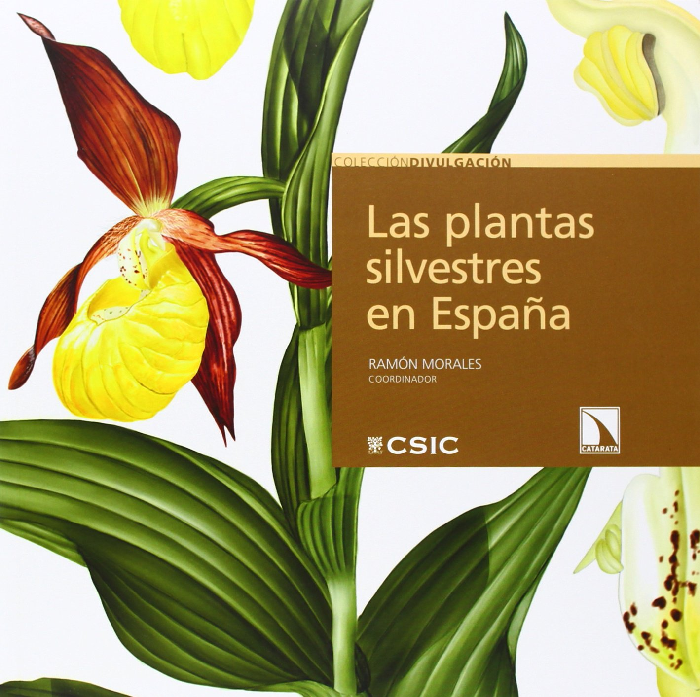 Las plantas silvestres en España (Divulgación): Amazon.es: Morales ...