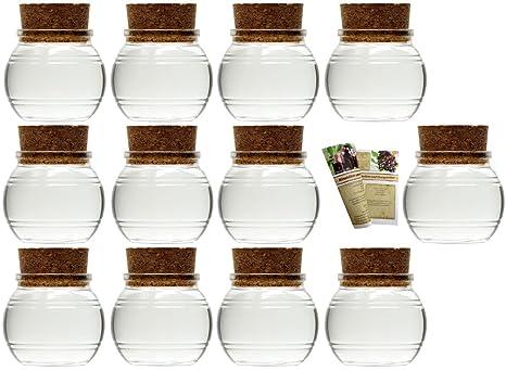 Aufbewahrungsglas Gew/ürze gouveo 14er Set kleine Korkengl/äser Mini 40 incl Glasdose 14er Set 40ml Korkenglas rund von Flaschendiscount Korken und28-seitige Flaschendiscount-Rezeptbrosch/üre f/ür Gastgeschenke