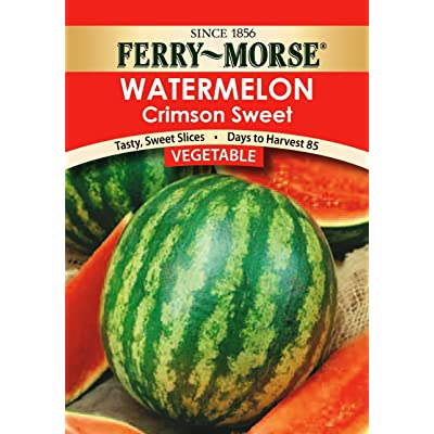Ferry-Morse Seeds 1417 Watermelon - Crimson Sweet 2.5 Gram Packet : Watermelon Plants : Garden & Outdoor