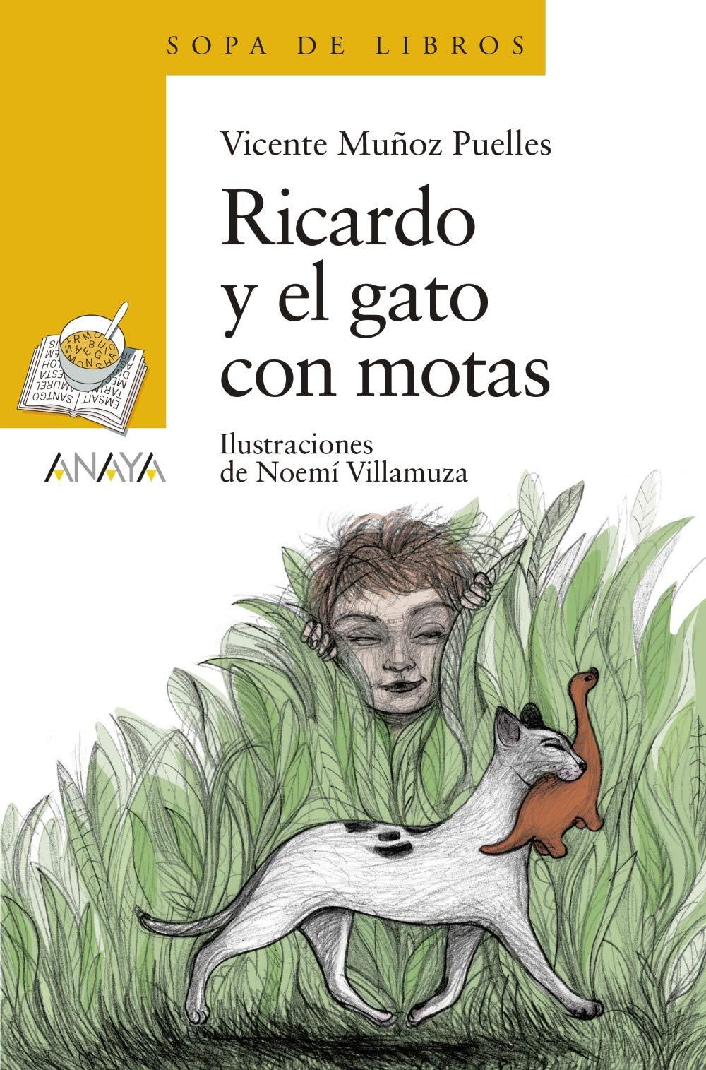 Ricardo y el gato con motas LITERATURA INFANTIL 6-11 años - Sopa ...