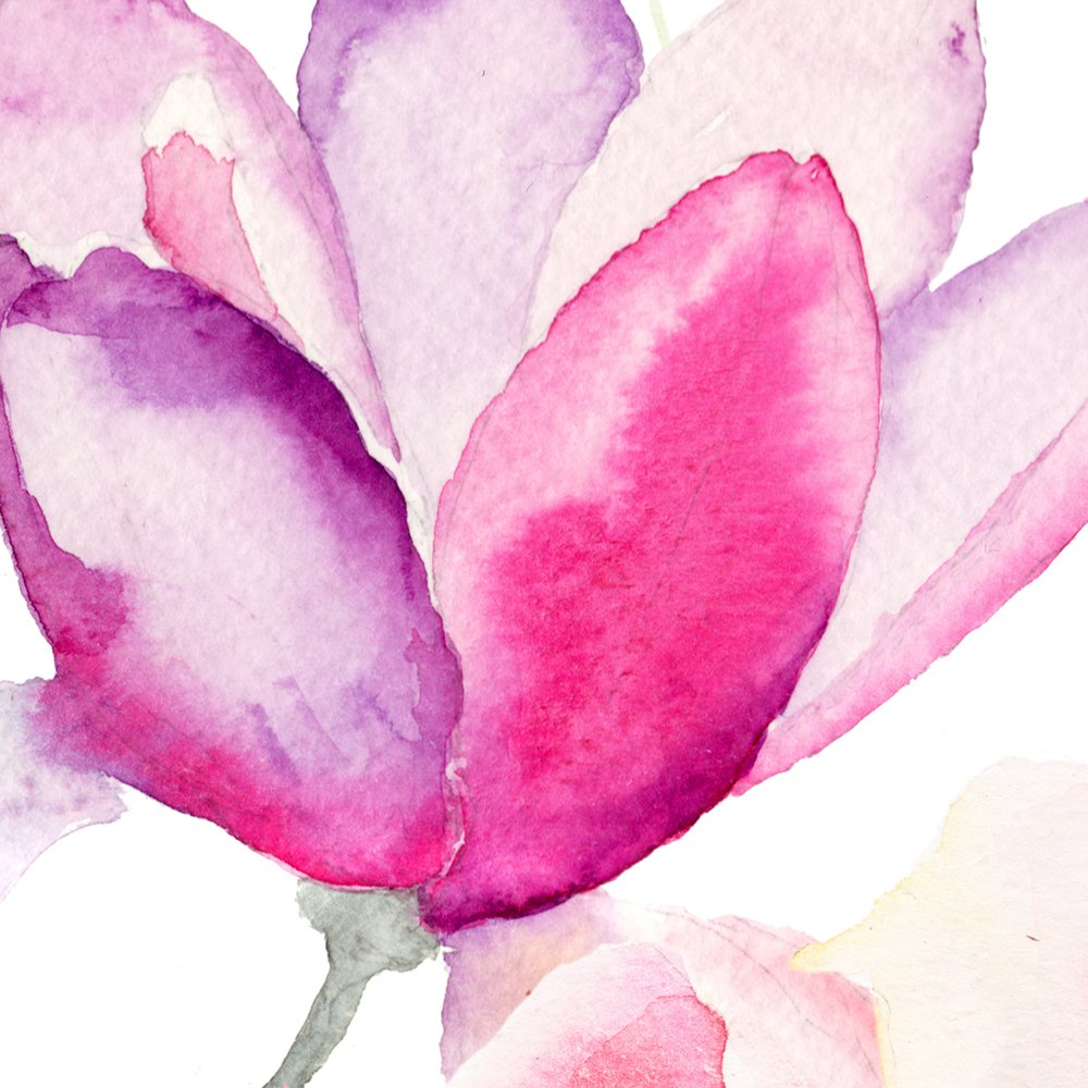 rosa Tropical b-B-0313-j-a murando Papel Pintado autoadhesivo 10 m Flores Magnolia Fotomurales Decoraci/ón de Pared Murales Pegatina decorativos adhesivos 3d panel moderna de Diseno Fotogr/áfico
