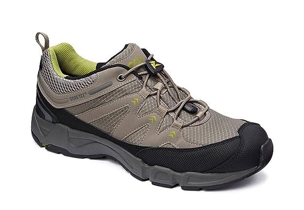 Herren Walkingschuh Terracruise II GoreTex, taupe, 43
