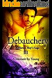 Debauchery (A Harem Boy's Saga Book 3) (English Edition)