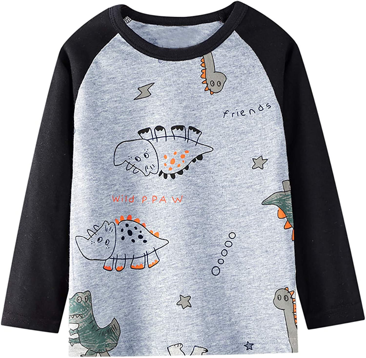 LaLaMa Little Boys Cotton Sweatshirts Toddler Casual Long Sleeve Tee T-Shirts Cartoon Pullover Tops for Kids 2-8T