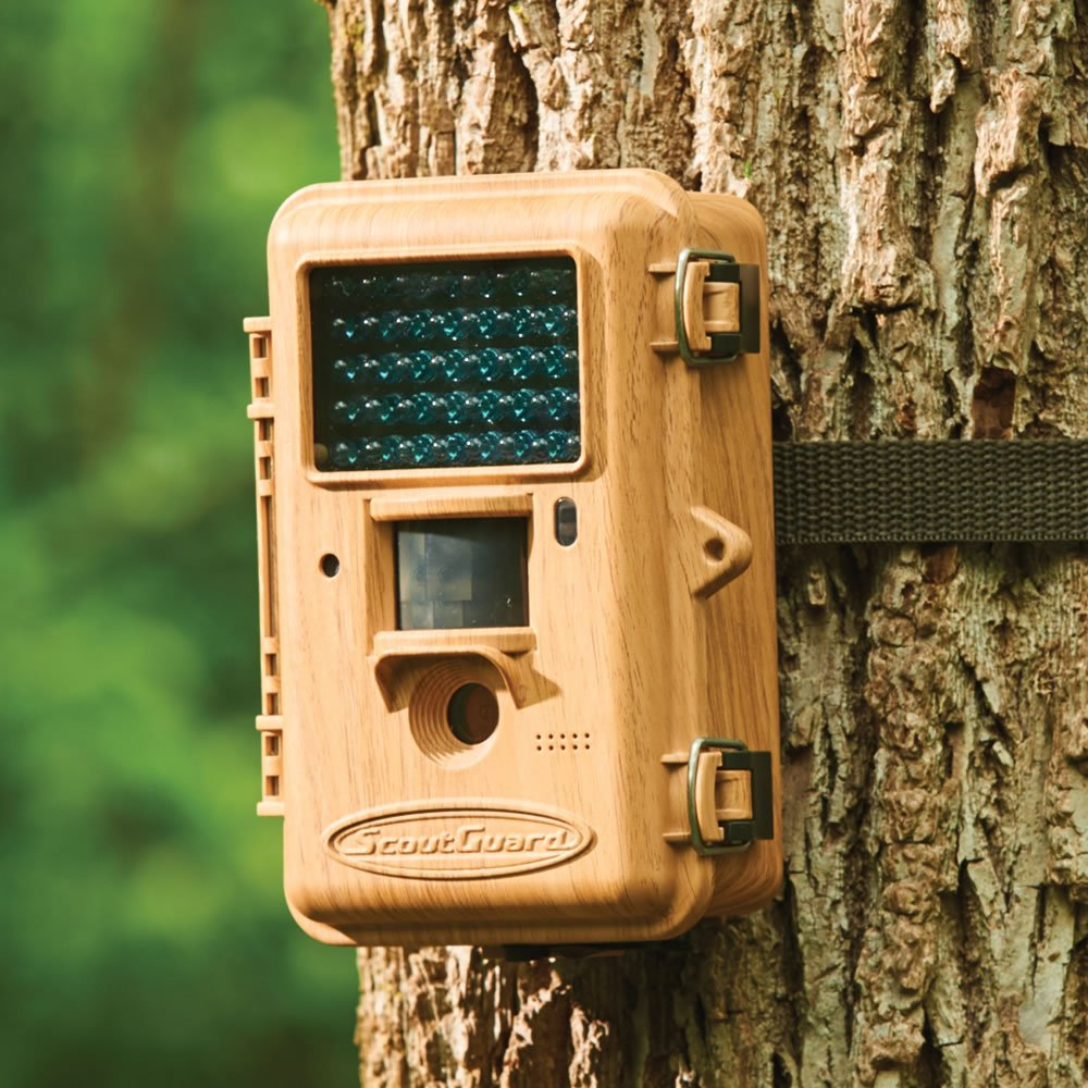 The High Definition Birding Camera by Boly
