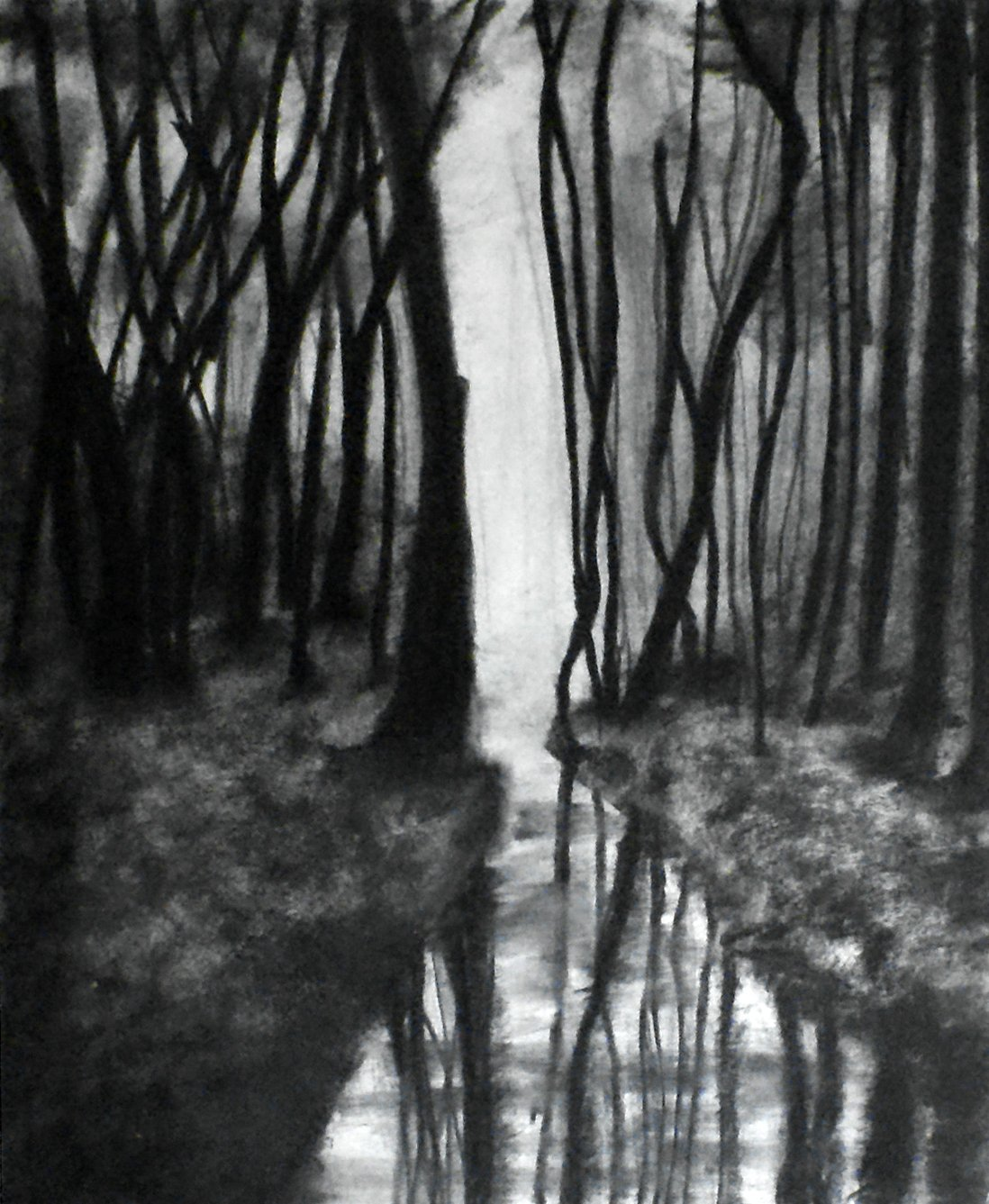 Amazon com 1 11x14 through the woods charcoal drawing