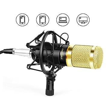 Earamble Professional Kondensator Mikrofon & Aufnahme Mikrofon für ...