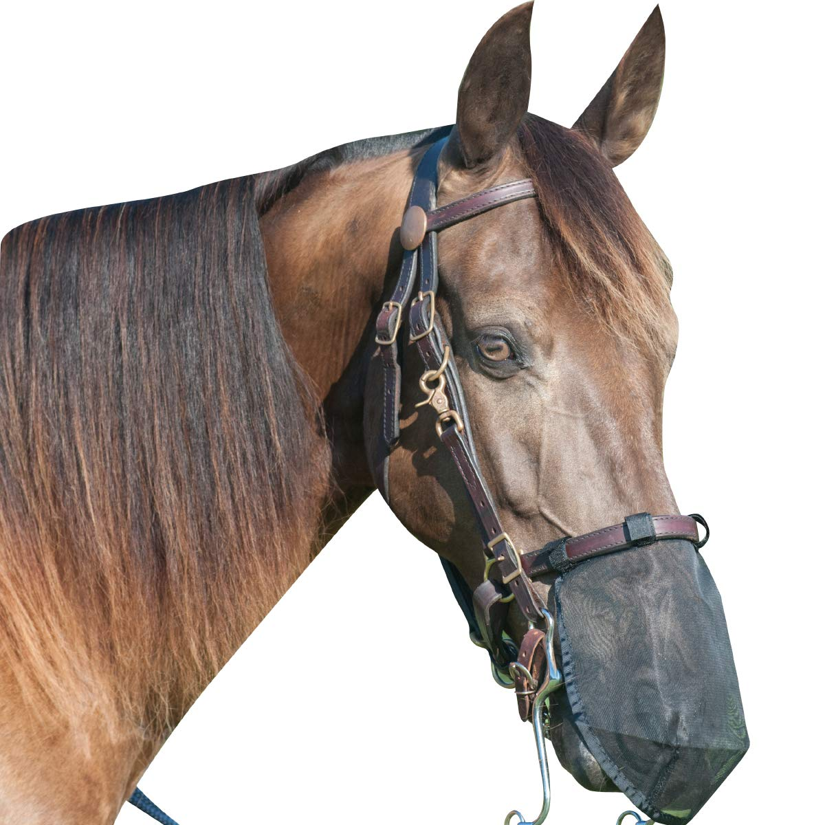 Cashel Quiet Ride Fly Mask, Nose Net, Medium by Cashel