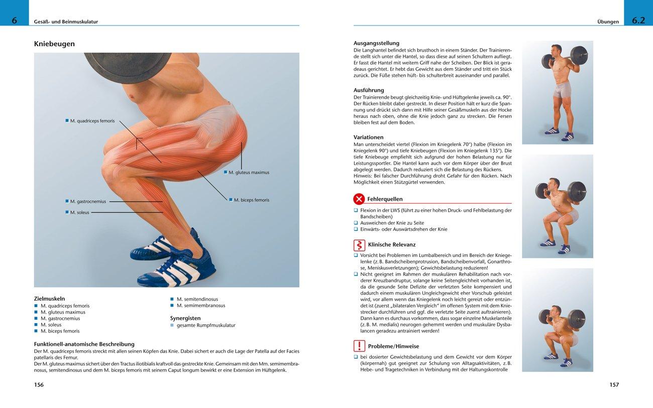 Bildatlas medizinisches Gerätetraining: Grundlagen/Anatomie/Training ...