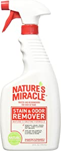 Nature's Miracle Stain and Odor Remover (24 oz Spray- 2 Pack)