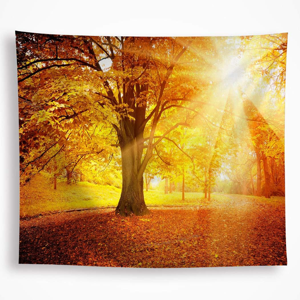 VAKADO Autumn Fall Trees Sunset Tapestry Wall Hanging Golden ...