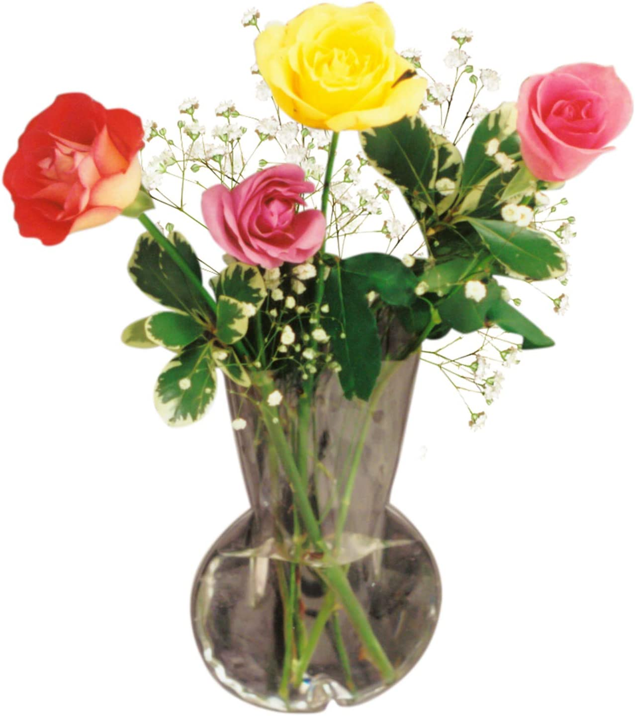 Gadjit Vinyl Window Vase Bulb Style -- Suctions to Windows and Mirrors, Holds Bouquet of Flower Stems, Greenery and Water, Clear Flexible Vinyl