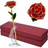 24K Gold Rose Flower/Gold Foil Artificial Forever Rose with Transparent Stand & Gift Box,Best Romantic Present Ideal for Her on Valentines Day, Mothers Day, Anniversary, Birthday ,Christmas,Decoration