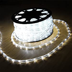 DINGFU Upgraded 100ft Low Voltage 2-Wire Waterproof LED Outdoor Rope Light Fit for Background Lighting Christmas Tube Lighting,Bridges,Eaves with UL Certified (White)