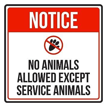 Amazon.com: Aviso no permitido animales excepto Servicio ...
