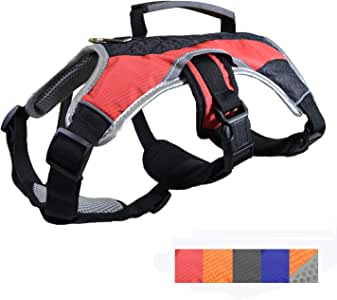 Dog Walking Lifting Carry Harness, Support Mesh Padded Vest, Accessory, Collar, Lightweight, No More Pulling, Tugging or Choking, for Puppies, Small Dogs (Red, Small), by Downtown Pet Supply