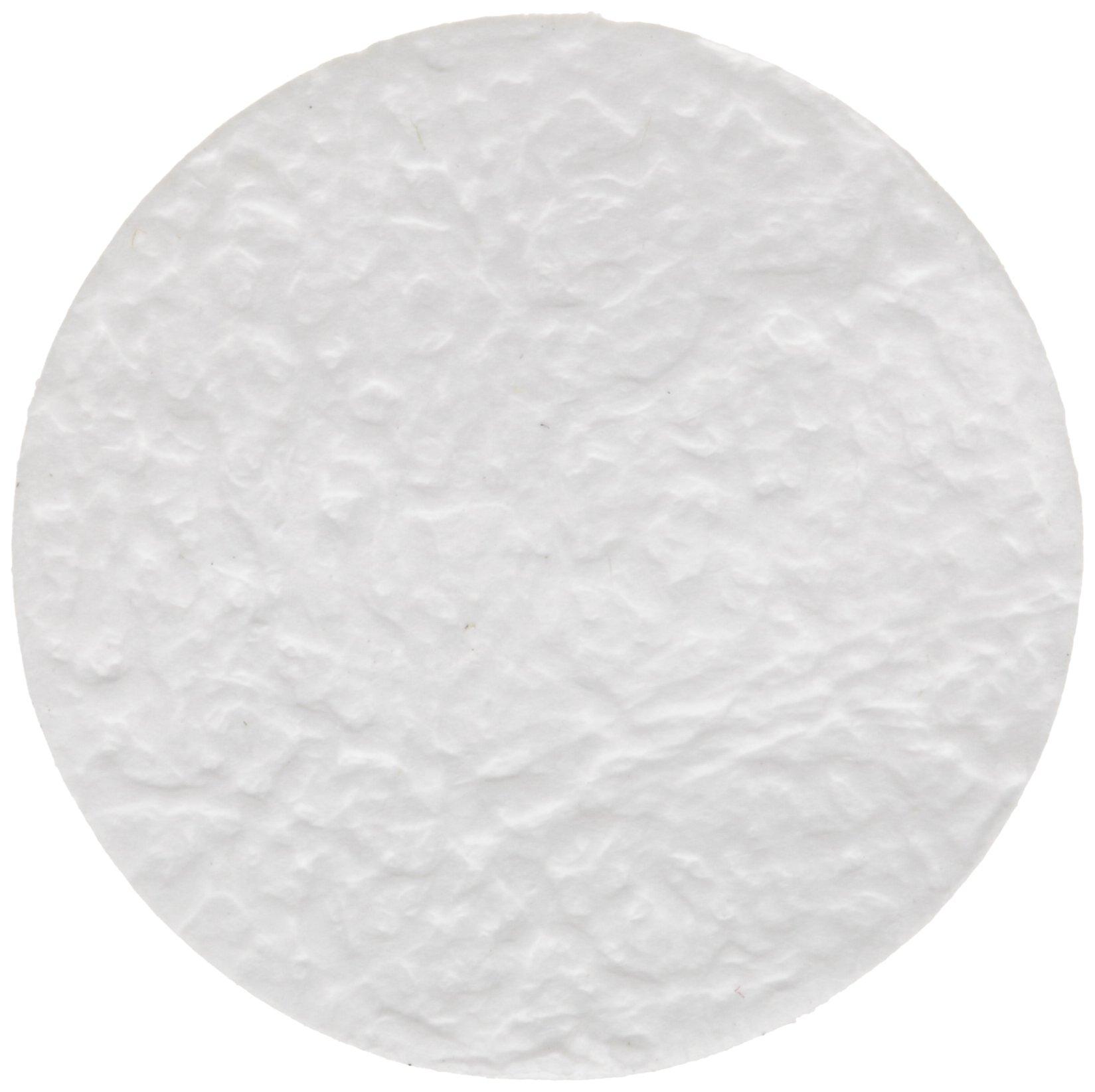Ahlstrom 1510-0250 Borosilicate Glass Microfiber Filter Paper, 0.7 Micron, Slow Flow, Grade 151, 2.5cm Diameter (Box of 100)