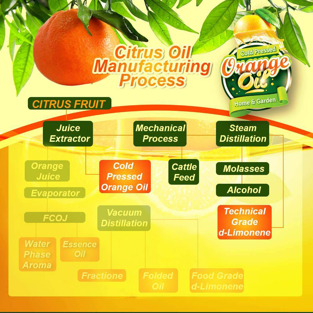Pure Cold Pressed ORANGE OIL Concentrate - 32 oz (D-Limonene) by EcoClean Solutions Inc (Image #5)