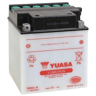 Yuasa YUAM2230C YB30CL-B Battery: Automotive