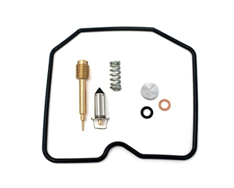 Amazon com: DP 0101-125 Carburetor Rebuild Repair Parts Kit Fits
