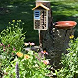 Nature's Way Bird Products 066561 PWH3-A