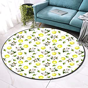 """Apple Round Entrance Doormat, Floral Design Aquarelle Paint Style Apple Flowers Blossom All Season Indoor Outdoor Welcome Doormat, 39"""" Diameter Yellow Green Fern Green White"""
