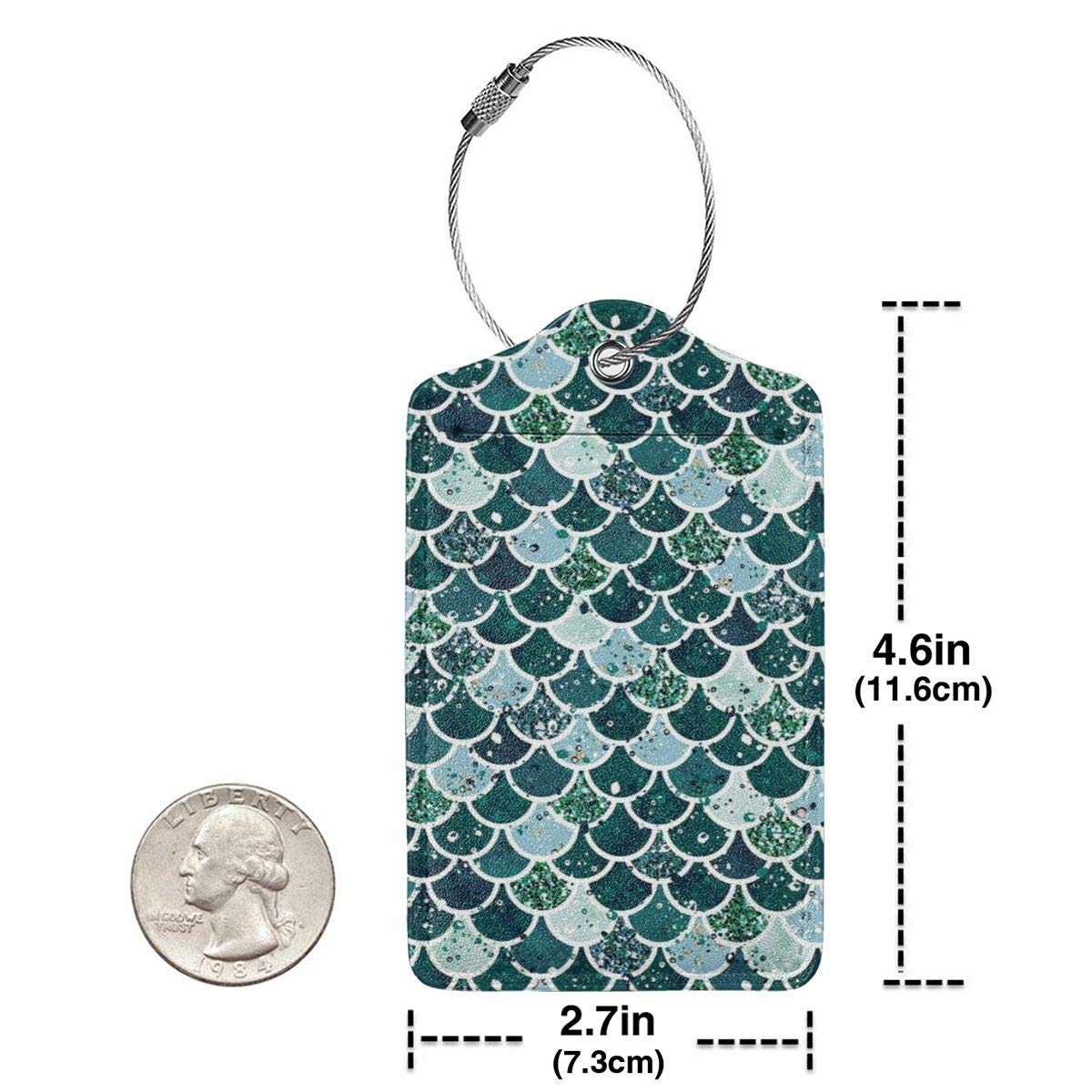 Sea-dragon-scales Leather Luggage Tags Personalized Address Card With Privacy Flap