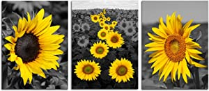 Sunflower Picture Painting Bathroom Decor - Black And White Daisy Yellow Canvas Rustic Wall Art Office Decorations Nature Flowers Pictures For Living Room Kitchen Bedroom Artwork Unframed 12X16 inch