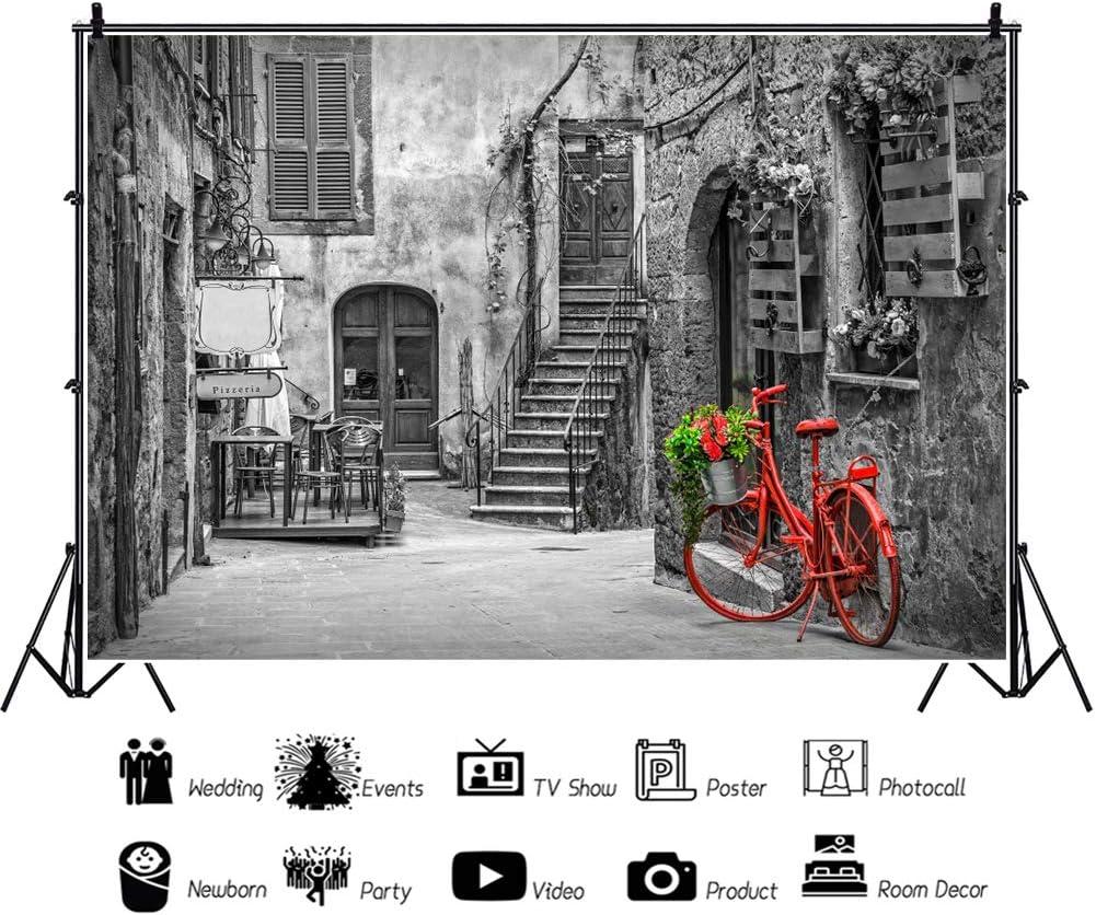 YongFoto 2,2x1,5m Edificio Fotografía Fondo Arquitectura Cultural Antiguo Calle de Europa Café Bicicleta roja Fondo Amante Boda Retrato Resorte Foto Accesorios ...
