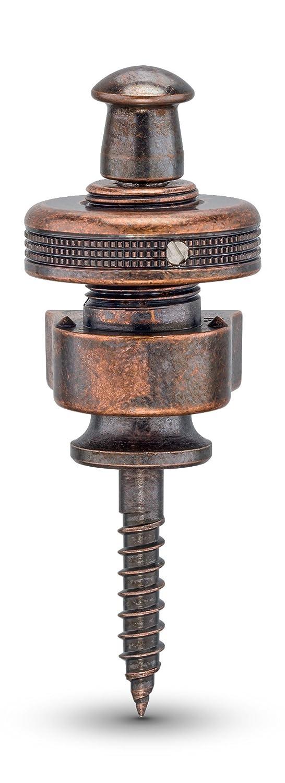 Schaller SC570253 - Juego de tornillos de cierre de seguridad: Amazon.es: Instrumentos musicales
