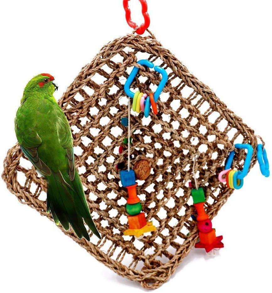 XDYFF Escalada Hamaca pájaros Juguete Paja Trenza Cuerda Escalada Hamaca Escalera Pájaro Forraje Natural Paja Loro Hamaca Juguete Columpio Morder Juguete Lovebird Pinzón Canario: Amazon.es: Deportes y aire libre