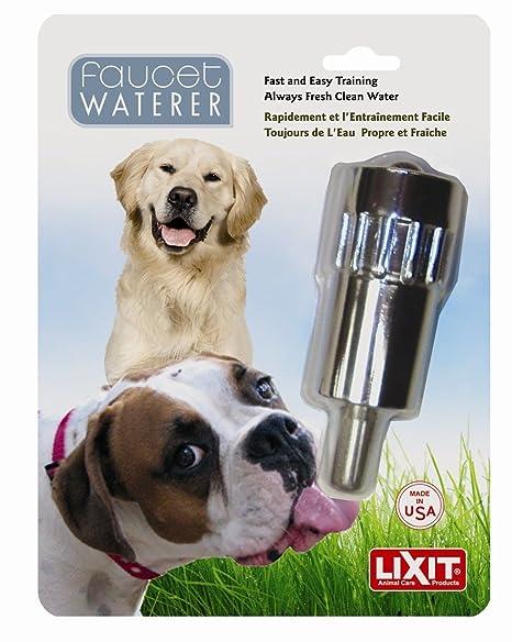 Amazon.com: Lixit mascota perro Waterer llave al aire última ...