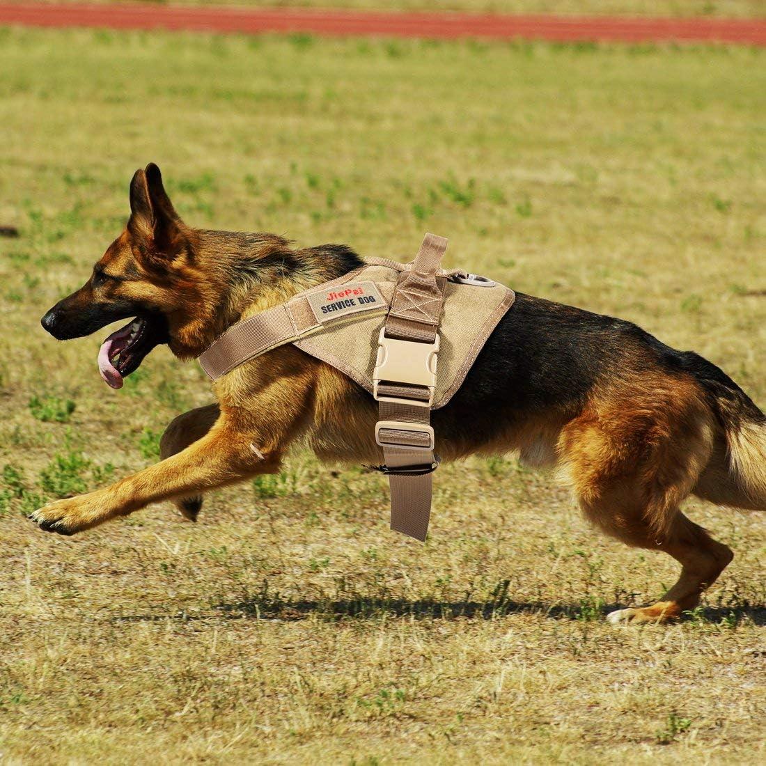 Chaleco de arn/és para Perro JIEPAI y Correa Correa de Nailon Chaleco Militar de Entrenamiento Patrulla de Servicio para Perros Grandes y medianos. Chaleco t/áctico Ajustable para Mascotas