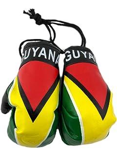 Amazon.com: 4pcs cubierta reposacabezas de Guyana bandera ...