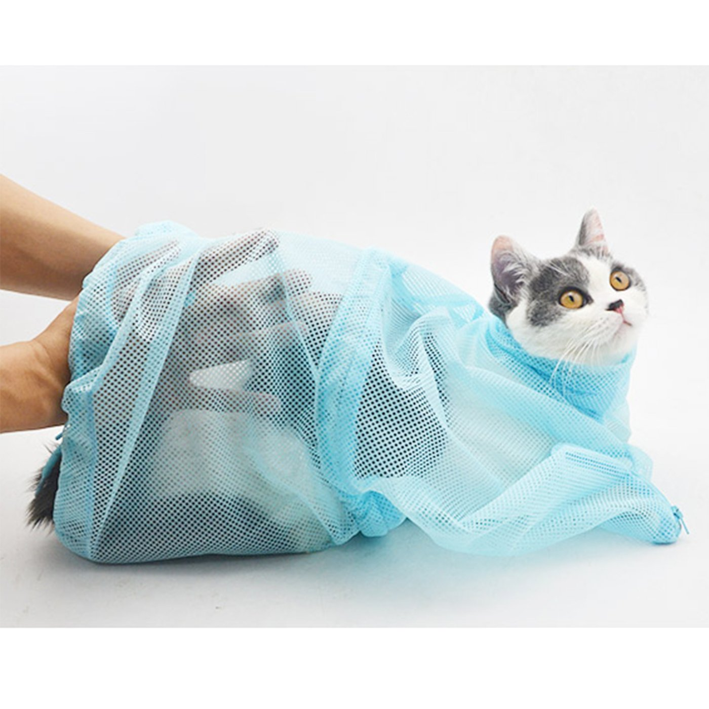 8ee8566edd : Amazon.com: Alfie Pet by Petoga Couture - Dustin Cat Washing Grooming Bag  - Color Blue