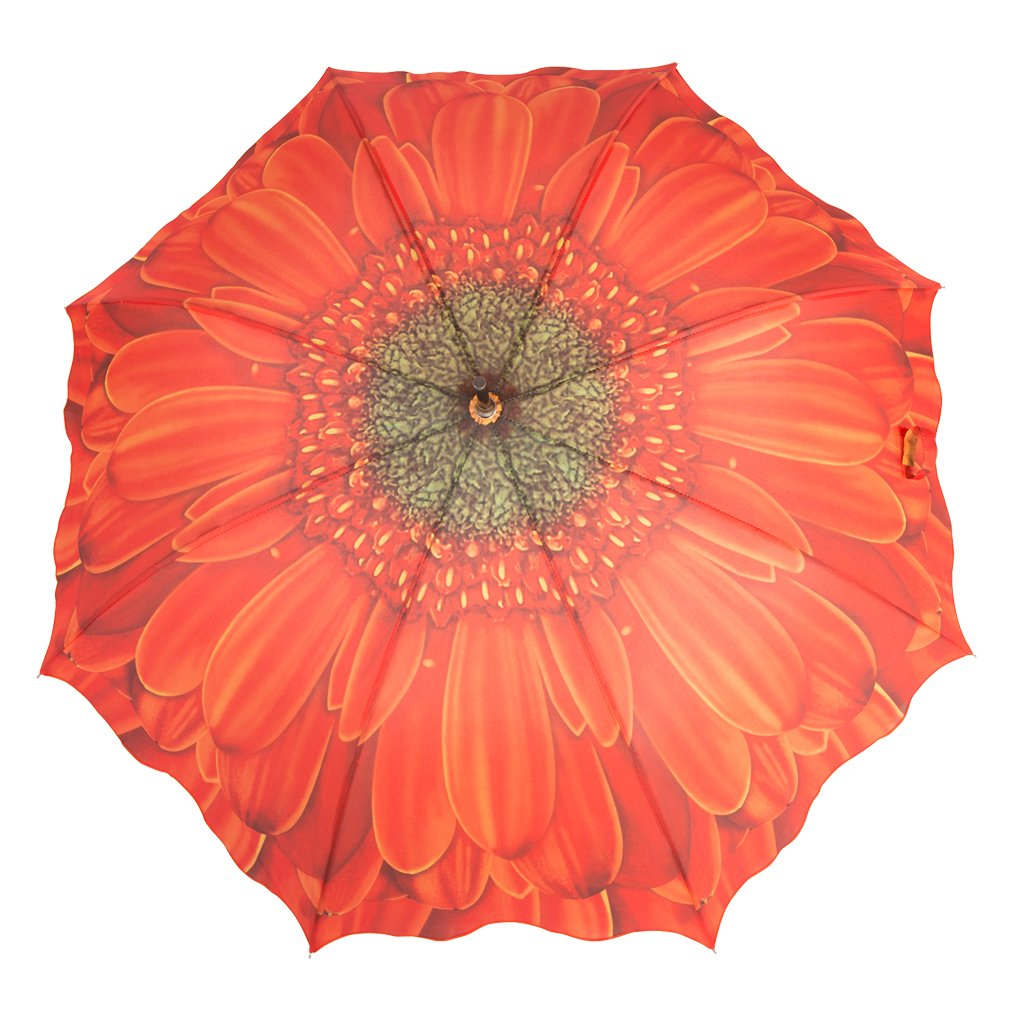 Austin House Orange Gerbera 8 Panel Stick Umbrella, Orange, International Carry-On Holiday Luggage AH04FL01081