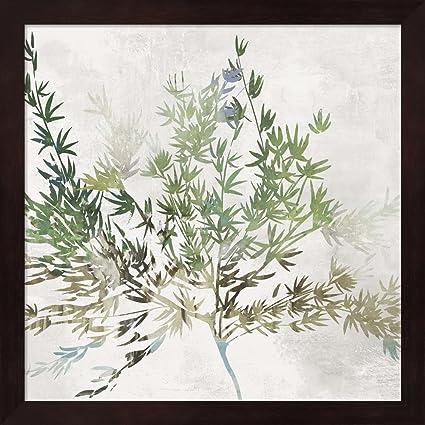 Amazon.com: Great Art Now Olive Branch by Asia Jensen Fine Art Print ...