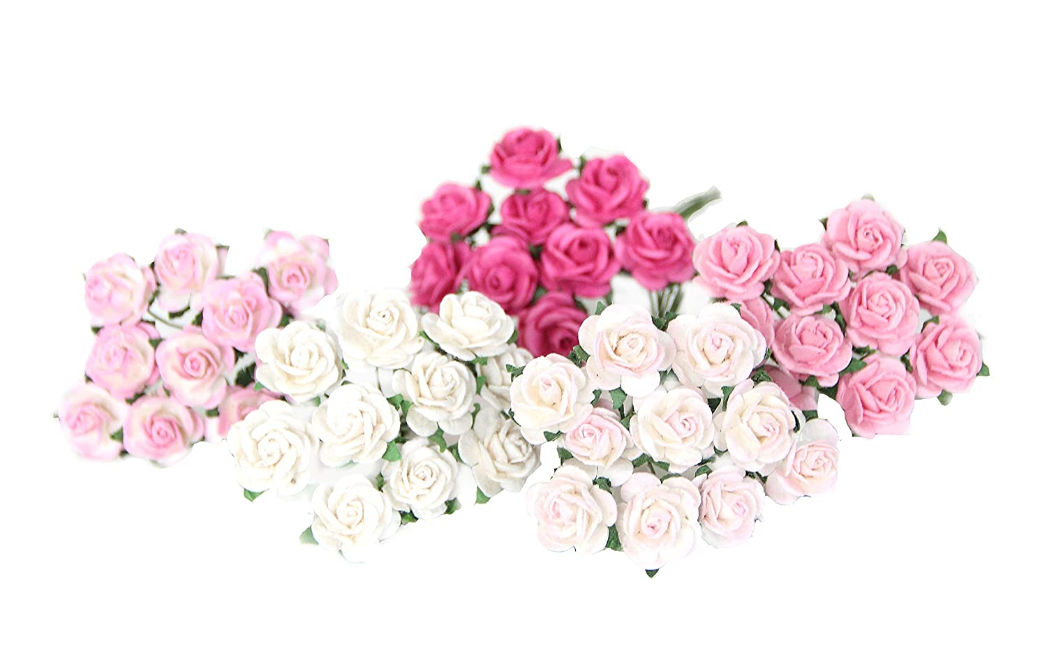 Amazoncom 50 Shades Of Pink Paper Roses For Scrapbooking Wedding