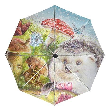 459707472597 Amazon.com : MAPOLO Hedgehog Butterfly Painting Print Windproof Rain ...