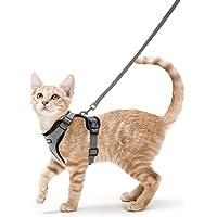 rabbitgoo Kattenharnas met lijn, onbreekbaar, kattenlijn, kitten, puppyharnas, verstelbaar, zacht borsttuig voor katten…