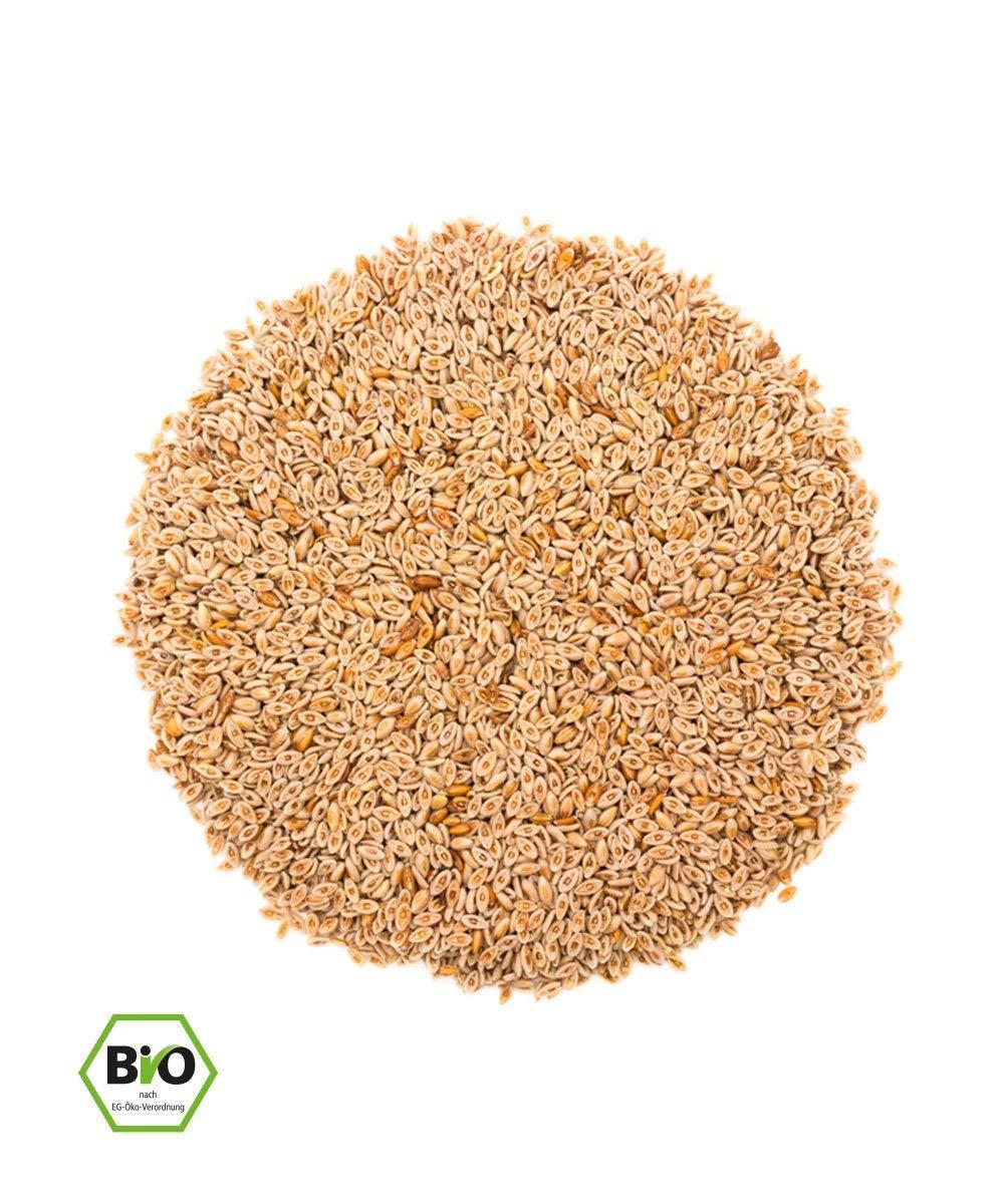 Orgánico Psyllium Intero (1kg, Bio) y/de calidad superior con el 99% de Purezza - Bolsas plegables - Sin lattosio y glutine - imbottigliato de Alemania ...