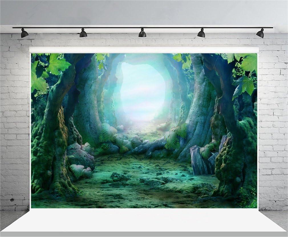 YongFoto 3x2m Toile de Fond Lumi/ères Paillettes Bokeh Halos Dreamy Fairy Tale Arch Magic Book Int/érieur Fond D/écors Studio Photo Portrait Enfant Video Fete Mariage Photobooth Photographie Accesorios