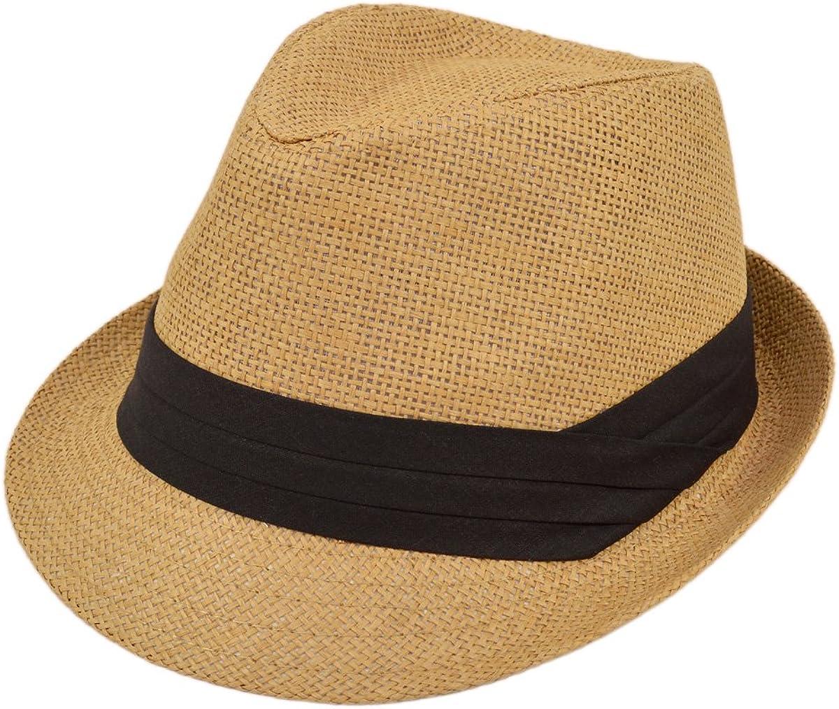 TrendsBlue Fedora Straw Hat...