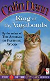 King Of The Vagabonds (Red Fox Middle Fiction)