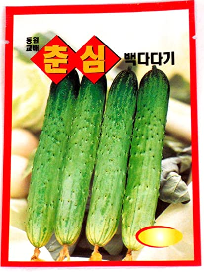 recipe: korean cucumber plant [5]
