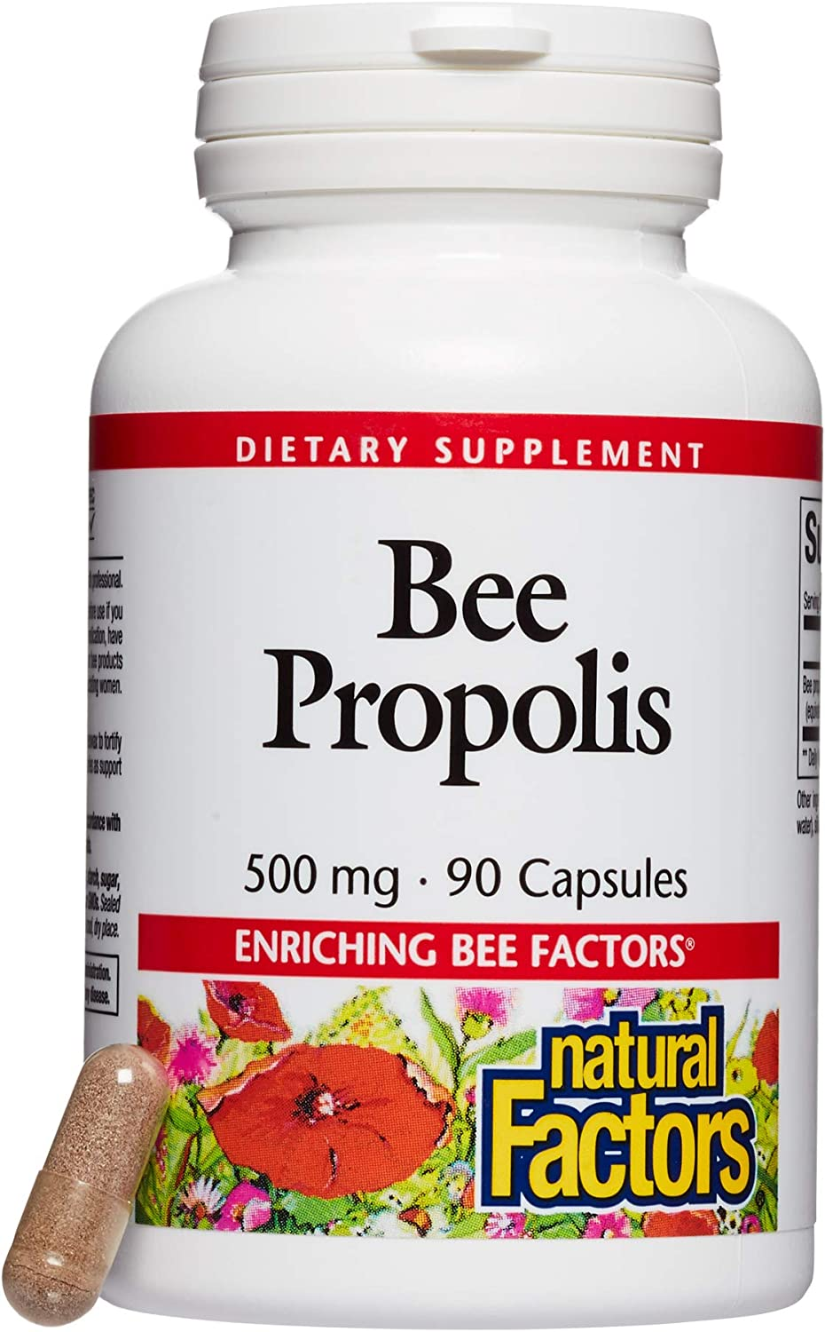 Natural Factors, Bee Propolis Extract 500 mg, Supports a Healthy Immune System, 90 capsules 90 servings