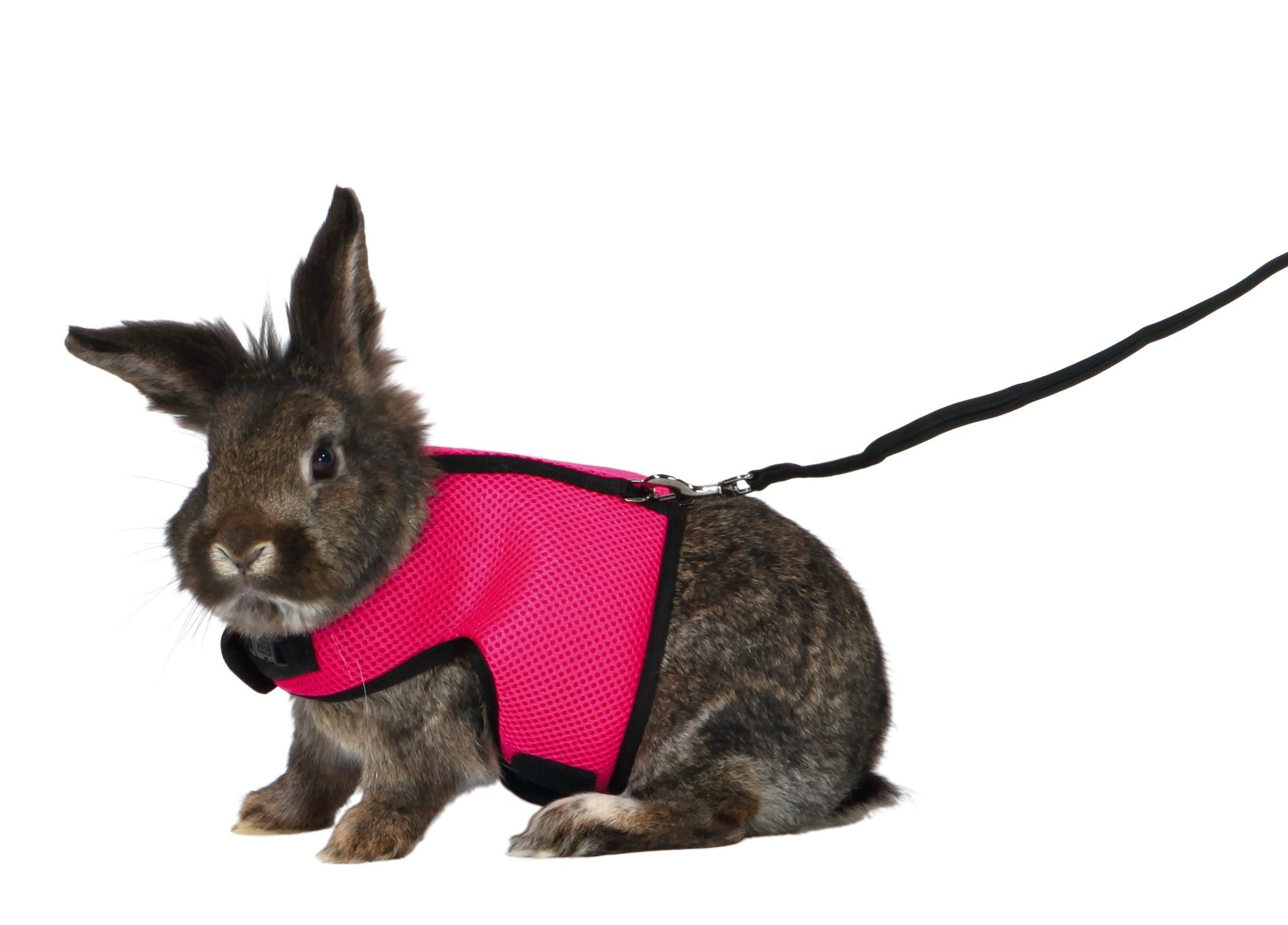 Trixie Pet Products 61514 1.20 m Soft Harness with Leash for Large Rabbits, Various, 25-40cm by Trixie